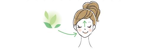 鼻から脳へ伝わるイラスト
