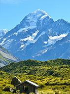 ニュージーランドの恵み、オーガニックマヌカハニー